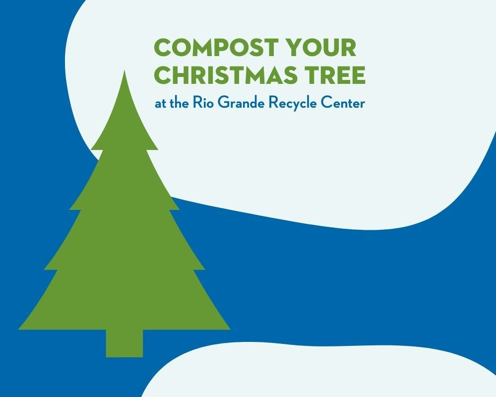 Christmas Tree Compost - Web Spotlight