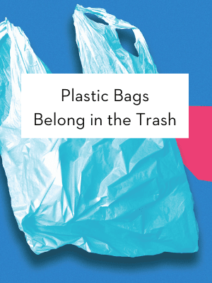 Plastic bags belong in the trash