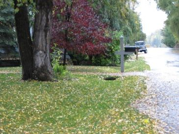 Grass swale in residential area